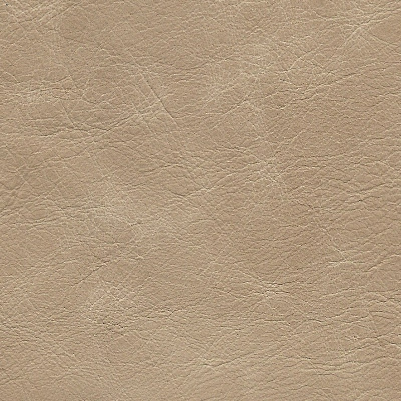 1101 Biscuit - Carleather